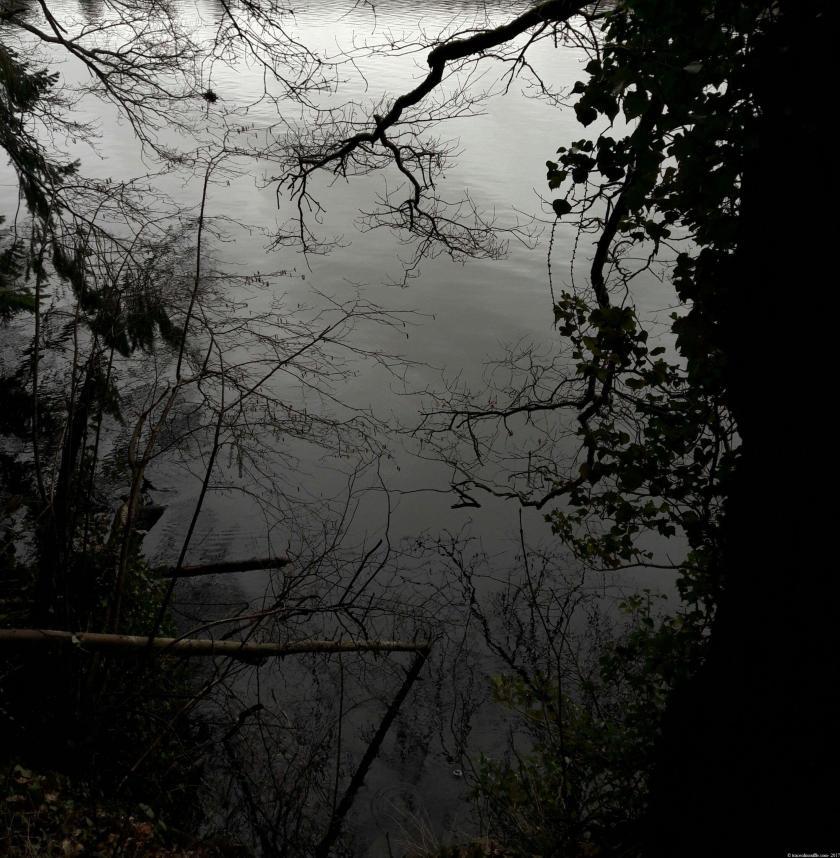 poesie-photographie-tracesdusouffle-etrelà.jpg