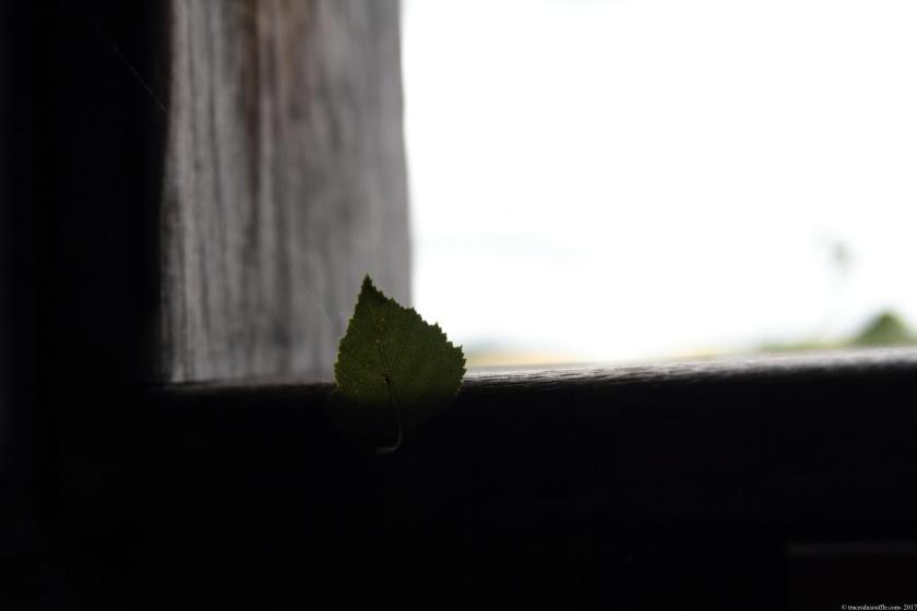 poesie-photographie-tracesdusouffe-silence.JPG
