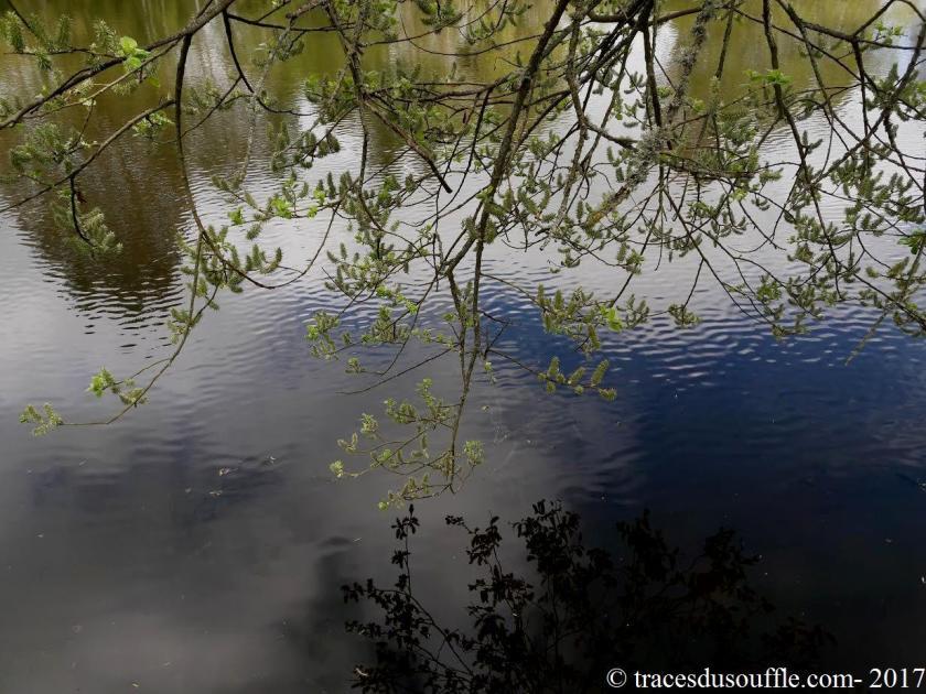 poesie-photographie-tracesdusouffle-appui.jpg