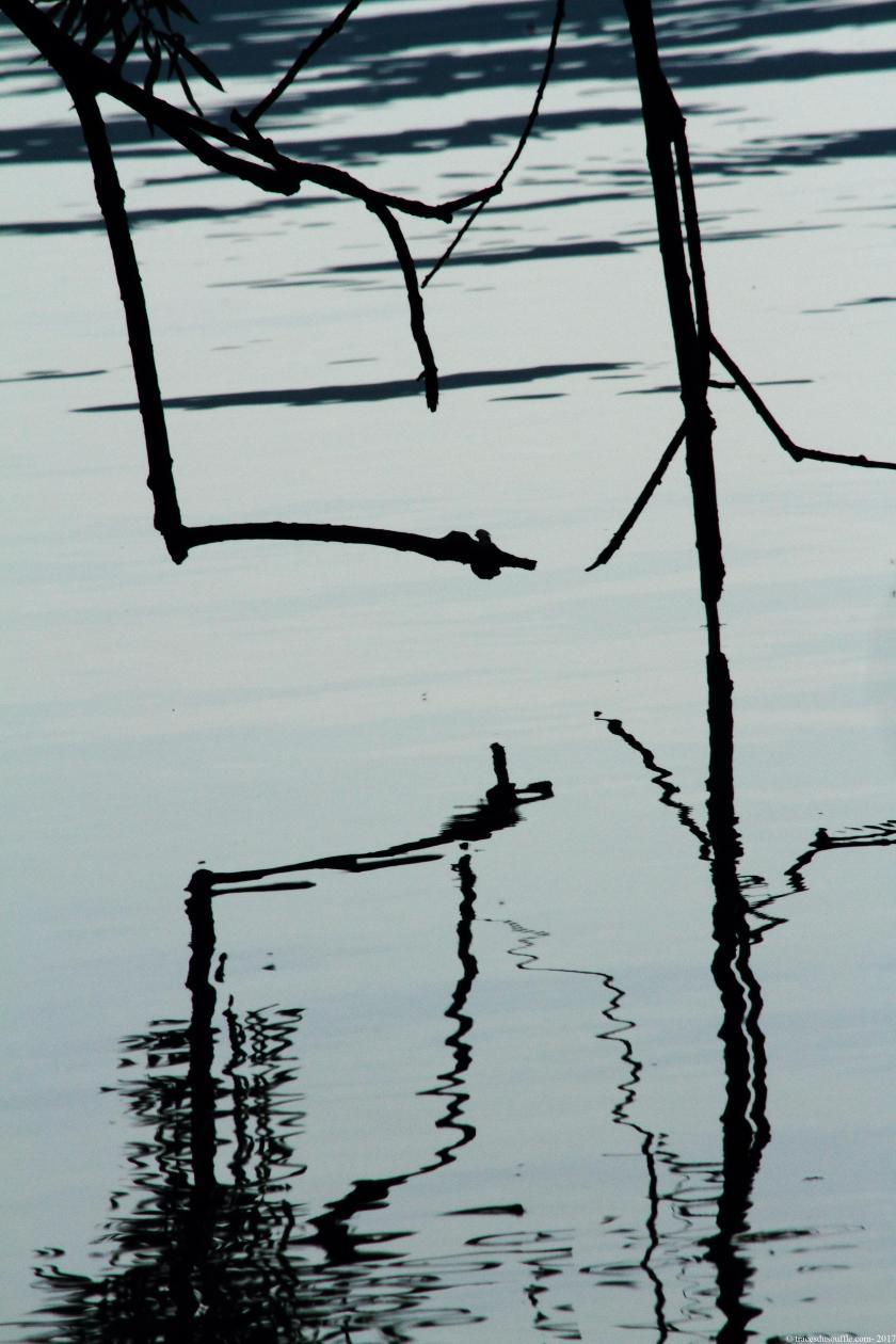 poesie-photographie-tracesdusouffle-reliance.JPG