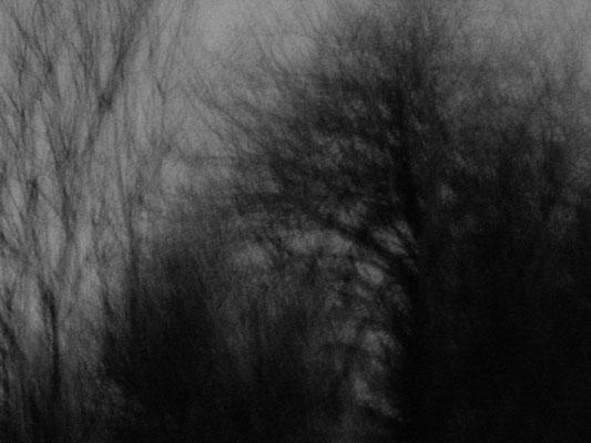 poeise-photographie-tracesdusouffle-humanité
