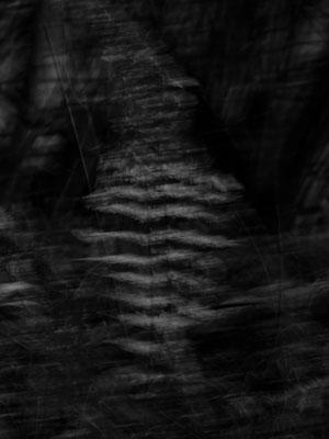 poesie-photographie-tracesdusouffle-incarnation.jpg