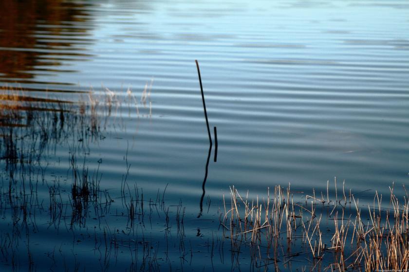 photographie-poésie-tracesdusouffle-marie-anne-schonfeld-etre-là.jpg