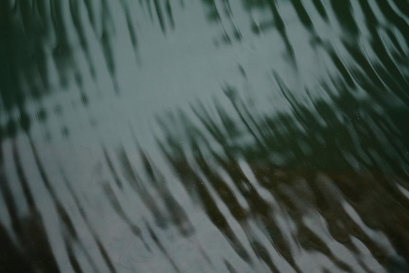 poésie-photographie-tracesdusouffle-marie-anne-schonfeld-essort.JPG