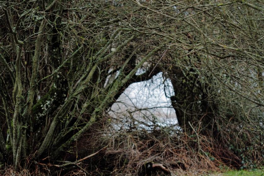 poesie-photographie-tracesdusouffle-marie-anne-schonfeld-enfance.JPG