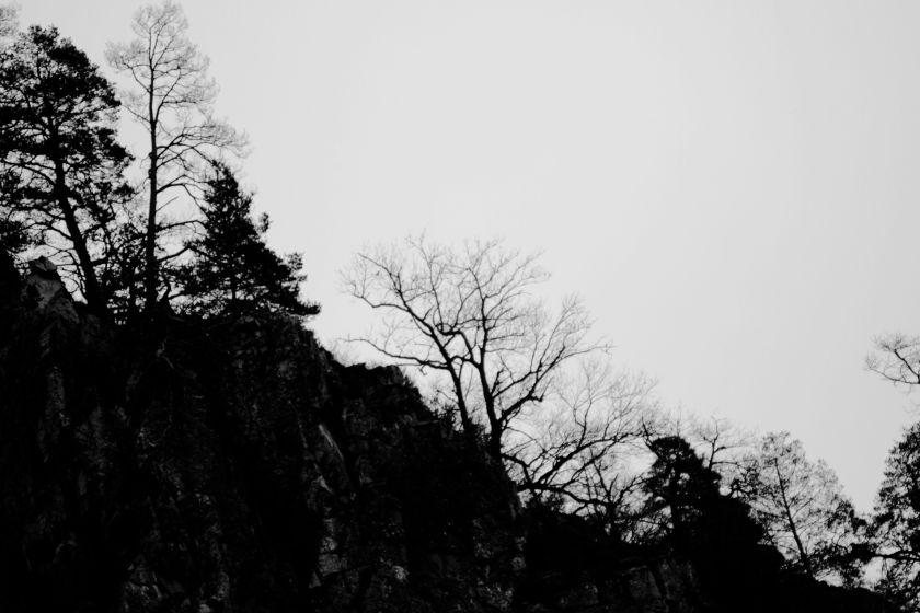 poesie-photographie-tracesdusouffle-marie-anne-schonfeld-lien.JPG