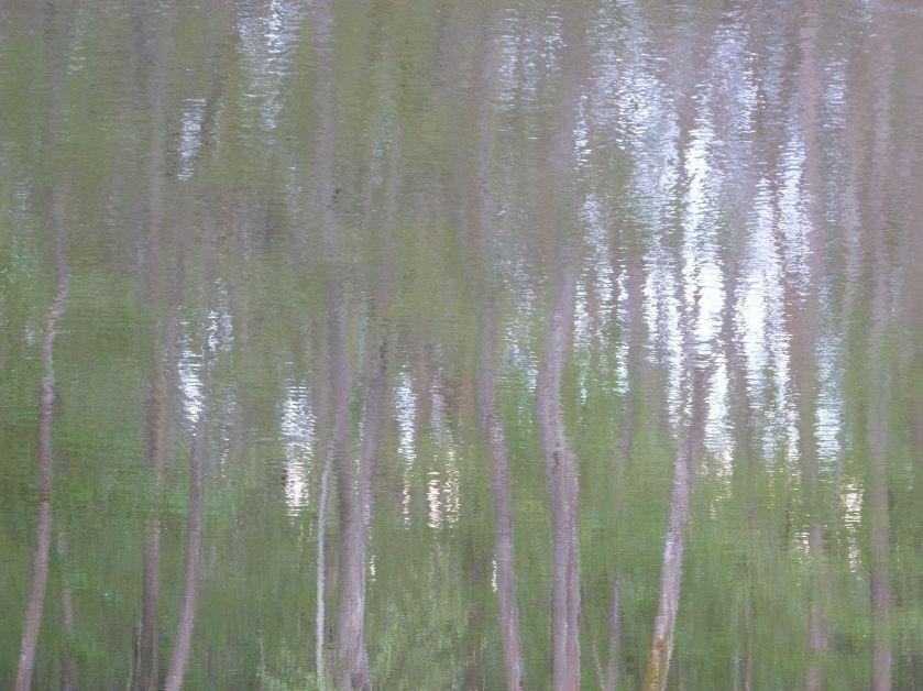 poesie-photographie-tracesdusouffle-marie-anne-schonfeld-retour.jpg
