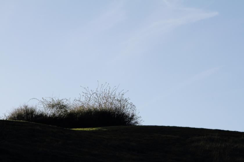 poesie-photographie-marie-anne-schonfeld-tracesdusouffle-jaillissement.JPG