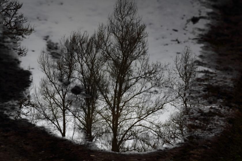 poesie-photographie-tracesdusouffle-marie-anne-schonfeld-patience.JPG