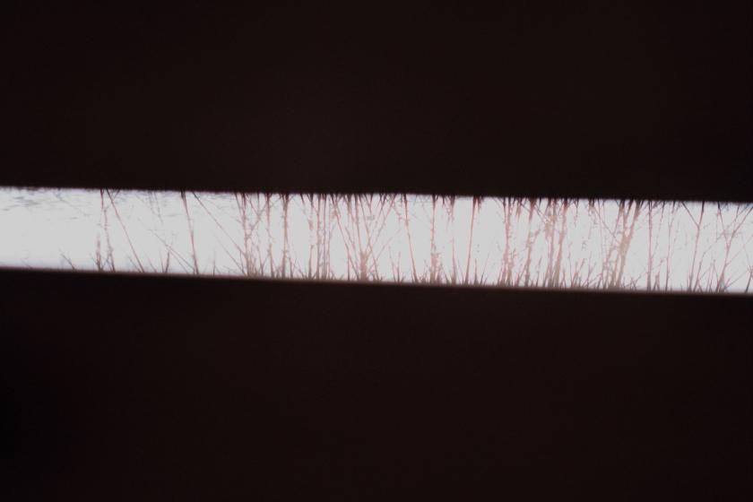 poesie-photographie-tracesdusouffle-marie-anne-schonfeld-contemplation.JPG