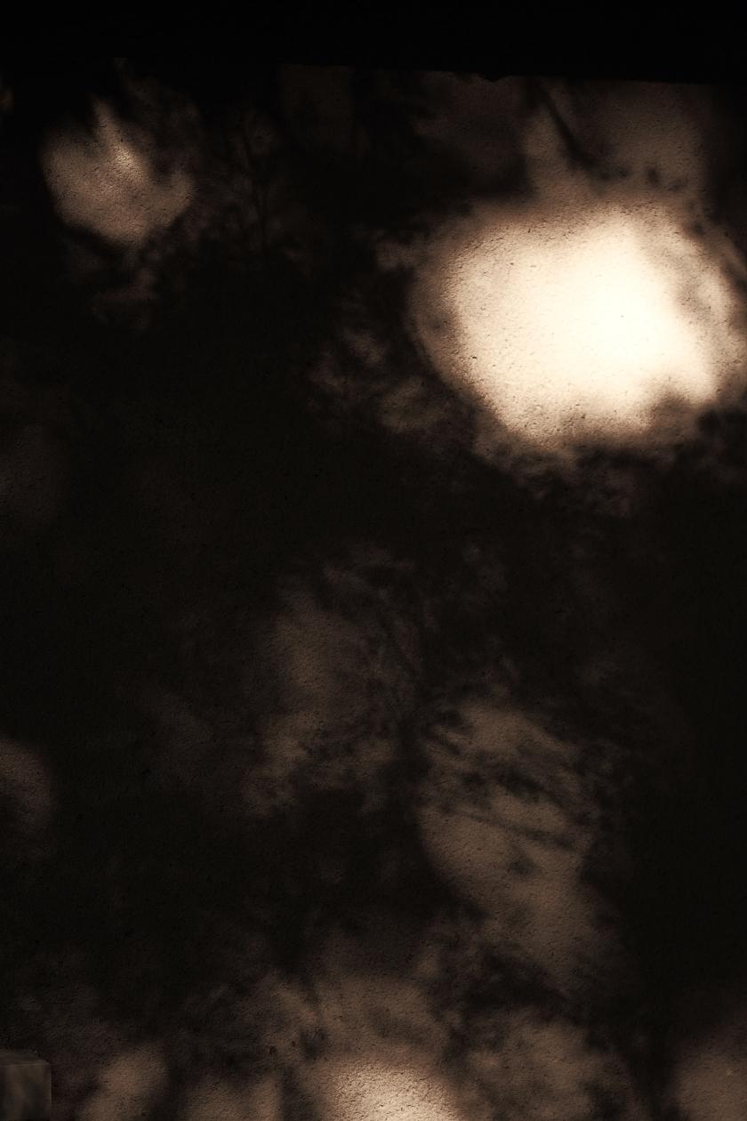 poésie-photographie-tracesdusouffle-marie-anne-schonfeld-lumière.JPG