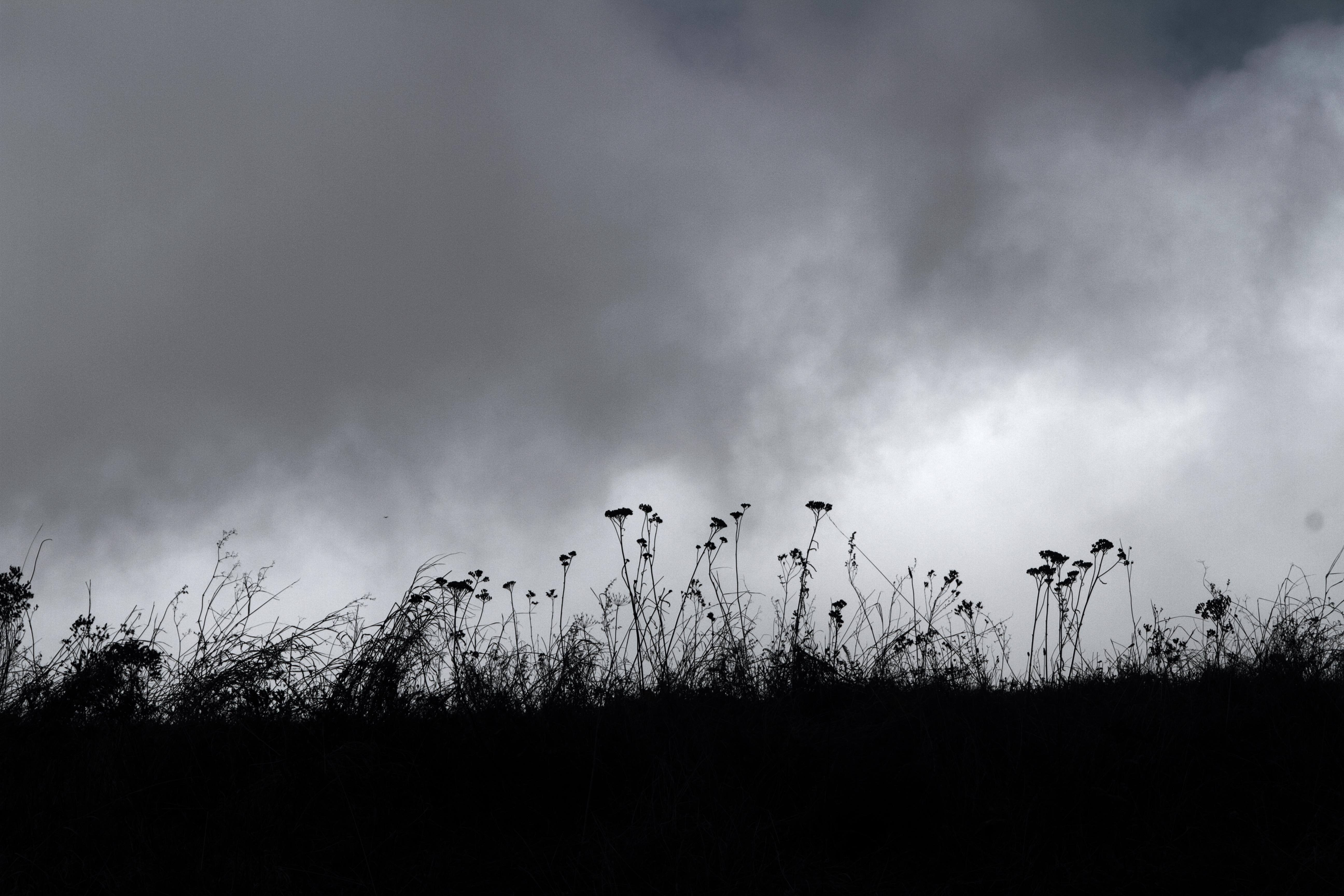poesie-photographie-tracesdusouffle-marie-anne-schonfeld-présence2.JPG